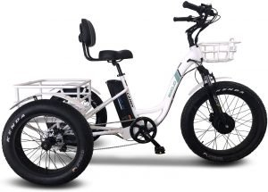 Emojo Electric Fat Tire Cargo Tricycle/Trike