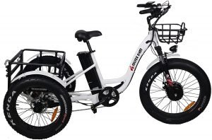 Burch Electric Fat Tire Cargo Tricycle/Trike